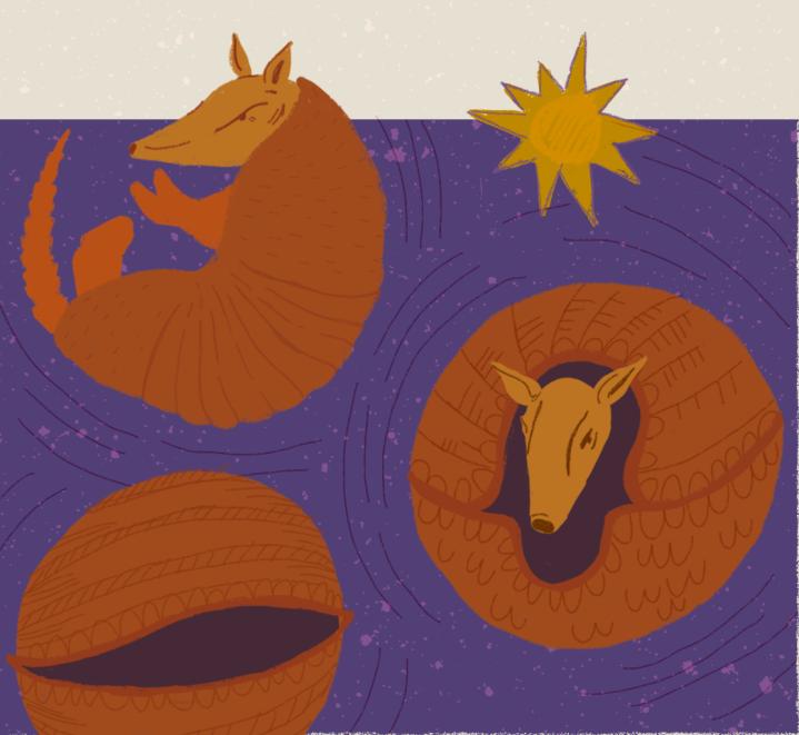Conselho Cósmico: A Carapaça doTatu
